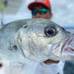 peche-poisson-costa-rica-12