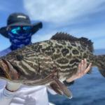 peche-poisson-costa-rica-59