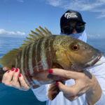 peche-poisson-costa-rica-70
