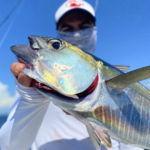 peche-poisson-costa-rica-75
